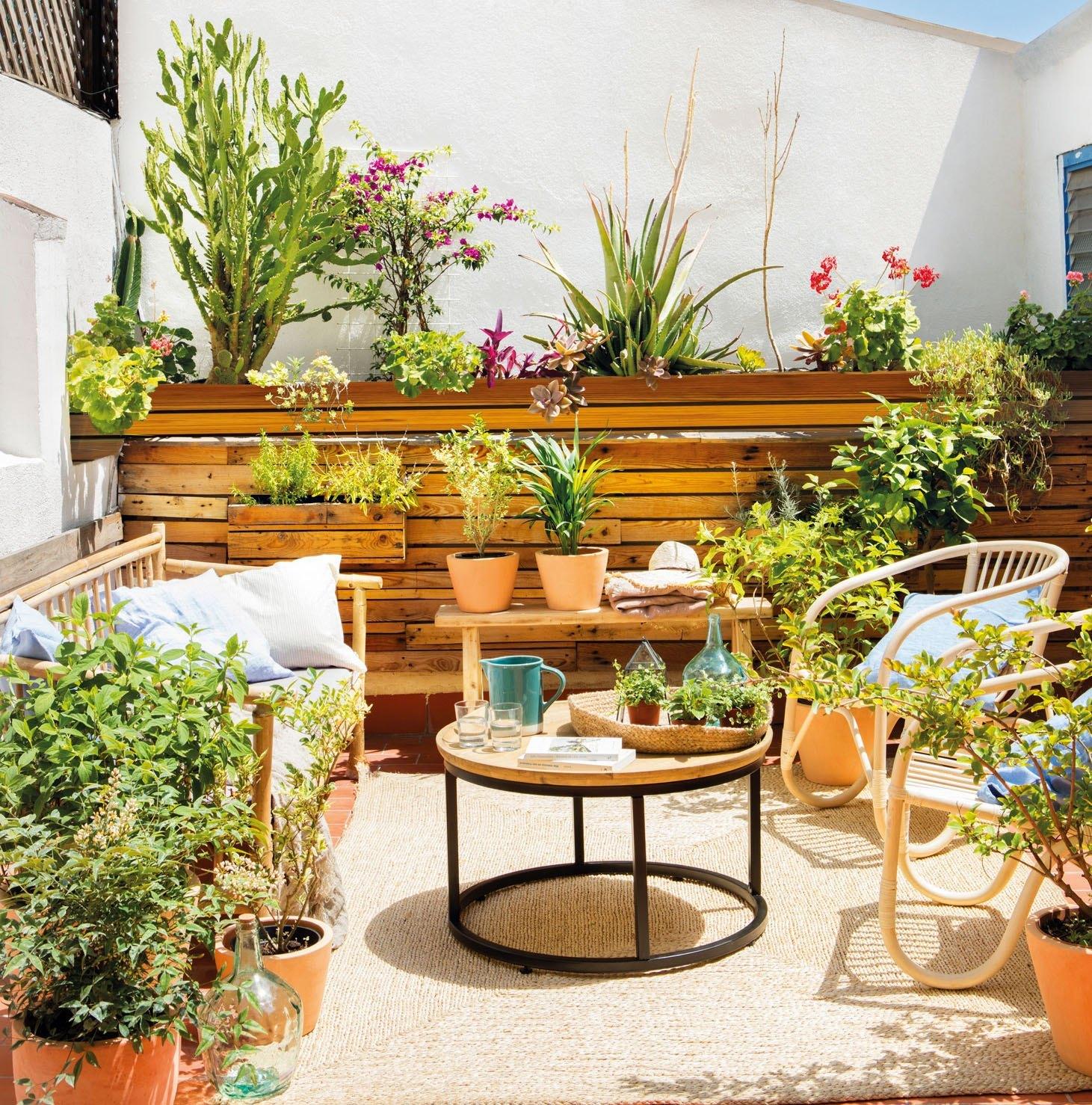 Plantas de moda para tu hogar y tu terraza a2projects for Decoracion con plantas para exteriores